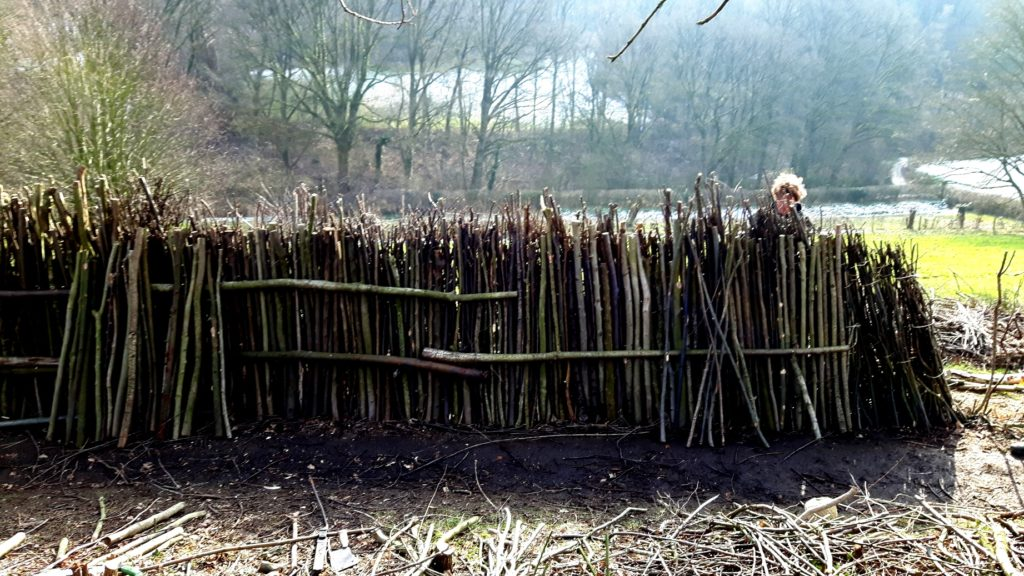 Tunen - the alternative for hedgelaying